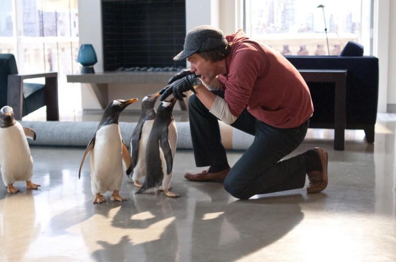 Mr. Poppers Penguins