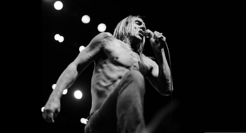 Iggy Pop Live in Basel 2015